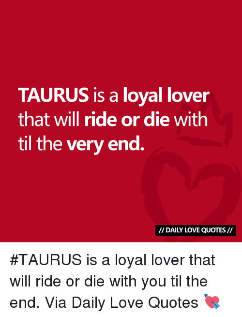 Love, Quotes, and Taurus: TAURUS is a loyal lover  that will ride or die with  til the very end.  I/ DAILY LOVE QUOTES// #TAURUS is a loyal lover that will ride or die with you til the end.  Via Daily Love Quotes 💘