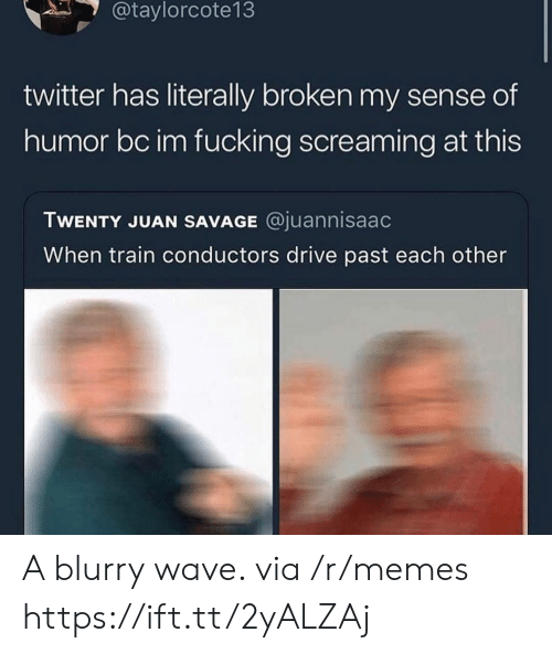 Fucking, Memes, and Savage: @taylorcote13  twitter has literally broken my sense of  humor bc im fucking screaming at this  TWENTY JUAN SAVAGE @juannisaac  When train conductors drive past each other A blurry wave. via /r/memes https://ift.tt/2yALZAj