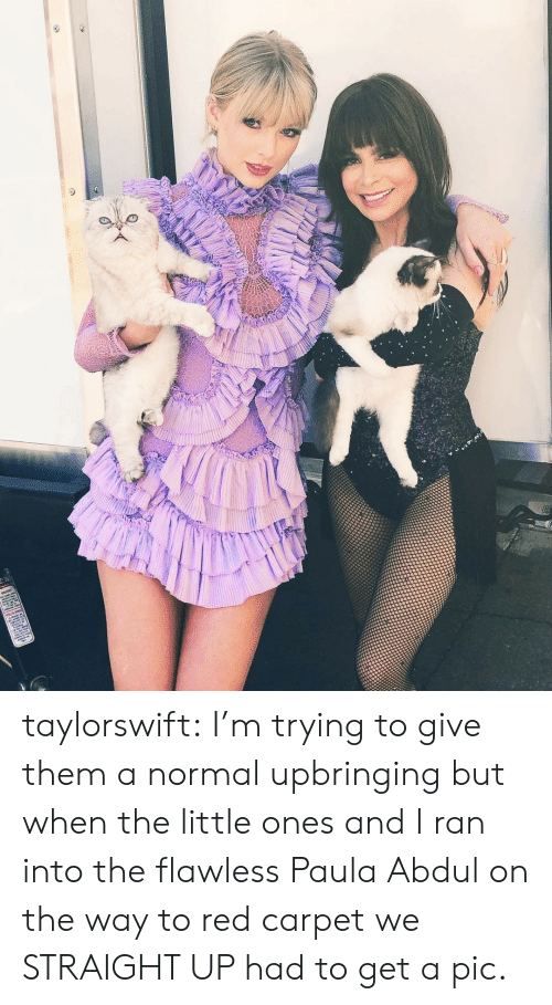 Target, Tumblr, and Blog: taylorswift:  I'm trying to give them a normal upbringing but when the little ones and I ran into the flawless Paula Abdulon the way to red carpet we STRAIGHT UP had to get a pic.