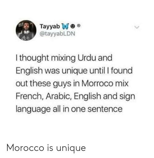 Sign Language, English, and French: Tayyab We  @tayyabLDN  sp  I thought mixing Urdu and  English was unique until I found  out these guys in Morroco mix  French, Arabic, English and sign  language all in one sentence Morocco is unique