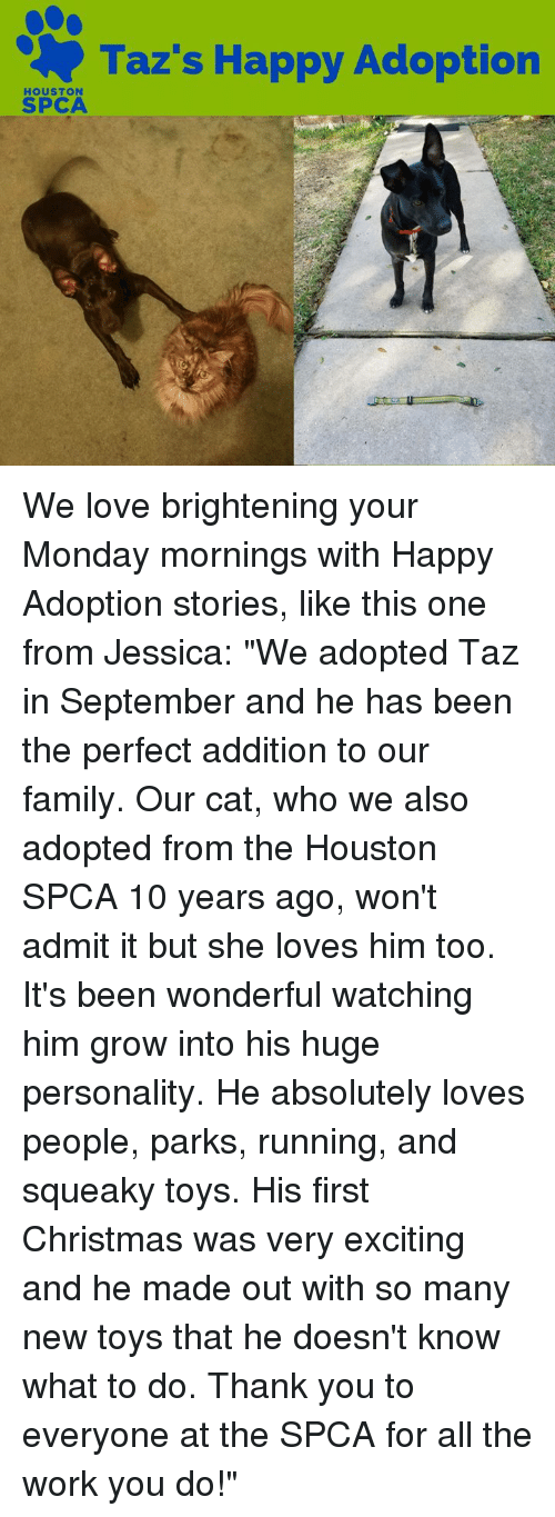 adopted love in the story of baby jessicas adoption