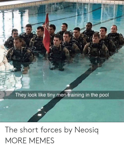 Dank, Memes, and Target: tc  They look like tiny men training in the pool The short forces by Neosiq MORE MEMES