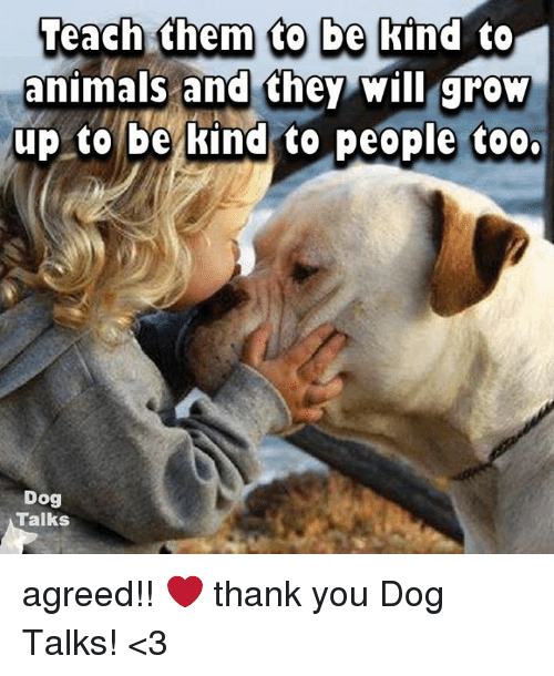 Teach Them to Be Kind to Animals and They Will Grow Up to ...