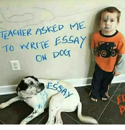 teacher askep to write essay on dot ess ed meon me memes teacher and eth159curren150 teacher askep to write essay on dot ess