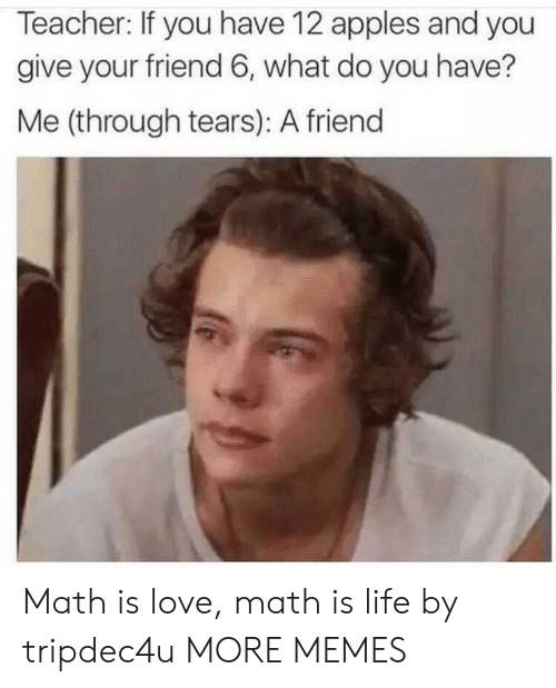 Dank, Life, and Love: Teacher: If you have 12 apples and you  give your friend 6, what do you have?  Me (through tears): A friend Math is love, math is life by tripdec4u MORE MEMES
