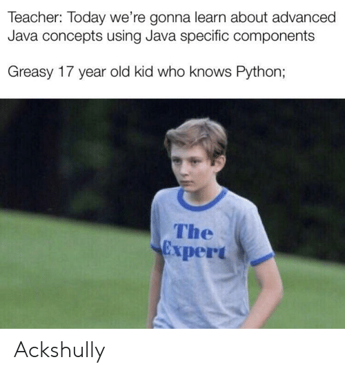 Teacher, Java, and Today: Teacher: Today we're gonna learn about advanced  Java concepts using Java specific components  Greasy 17 year old kid who knows Python;  The  Expert Ackshully