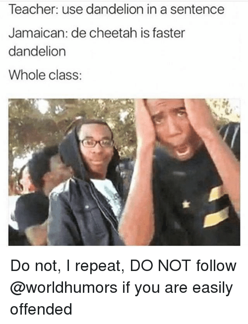 Funny, Teacher, and Cheetah: Teacher: use dandelion in a sentence  Jamaican: de cheetah is faster  dandelion  Whole class: Do not, I repeat, DO NOT follow @worldhumors if you are easily offended