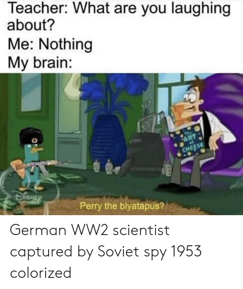 Teacher, Brain, and Soviet: Teacher: What are you laughing  about?  Me: Nothing  My brain:  Perry the blyatapus? German WW2 scientist captured by Soviet spy 1953 colorized