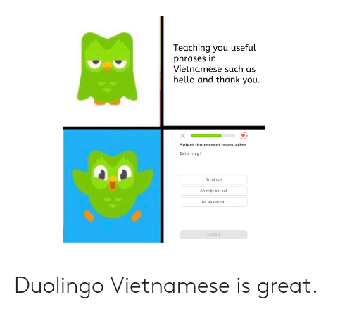 Teaching You Useful Phrases in Vietnamese Such as Hello and