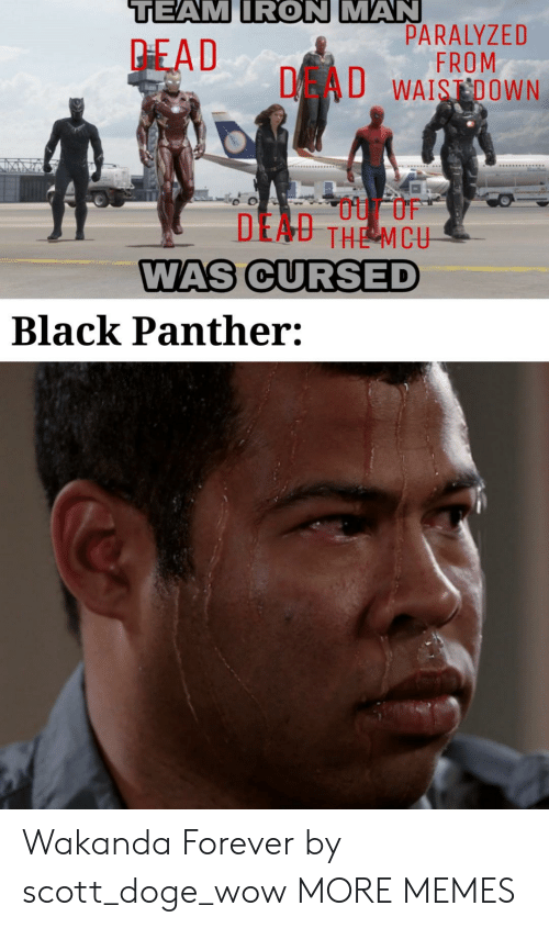 Dank, Doge, and Iron Man: TEAM IRON MAN  PARALYZED  FROM  DAU WAISDOWN  PEAD  DEAU THE MCU  WAS CURSED  Black Panther: Wakanda Forever by scott_doge_wow MORE MEMES