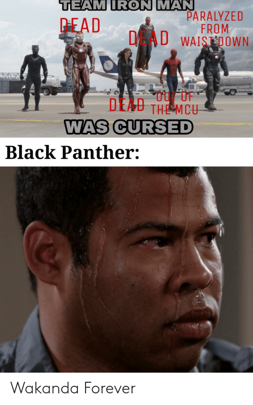 Iron Man, Black, and Black Panther: TEAM IRON MAN  PARALYZED  FROM  DAU WAISDOWN  PEAD  DEAU THE MCU  WAS CURSED  Black Panther: Wakanda Forever