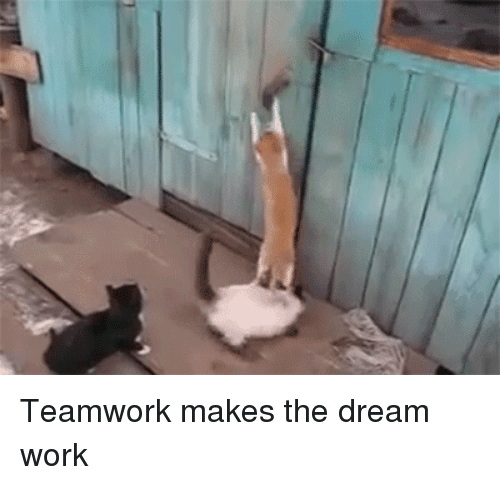 25+ Best Memes About Dream Work