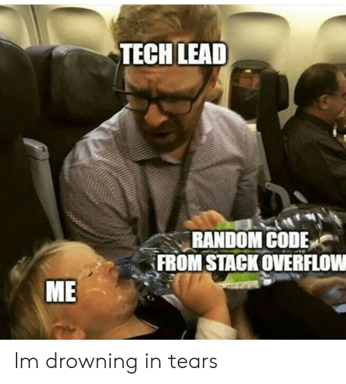 Random, Lead, and Stack: TECH LEAD  RANDOM CODEv︵  FROM STACK OVERFLOW  ME Im drowning in tears