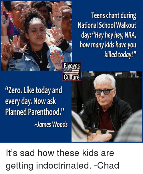 """Memes, School, and Zero: Teens chant during  National School Walkout  day: """"Hey hey hey, NRA,  ow many kids have you  killed today?""""  Elover  Cuiture  """"Zero. Like today and  every day. Now ask  Planned Parenthood.""""  James Woods It's sad how these kids are getting indoctrinated.  -Chad"""