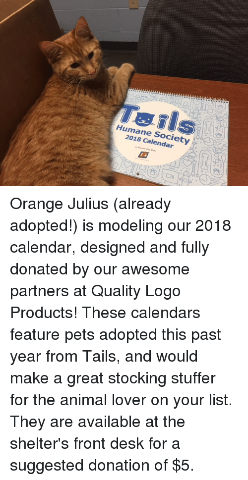memes animal and calendar teils humane society 2018 calendar orange julius already