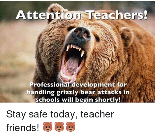 tel attentio eachers professional development for handling grizzly bear attacks 12457856 ✅ 25 best memes about grizzly bears attacking grizzly bears