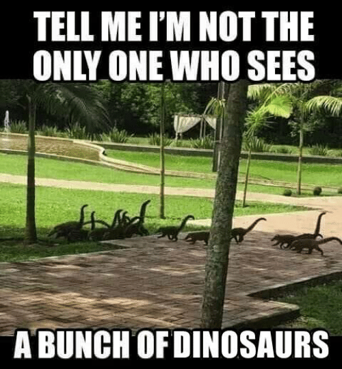 Memes, Only One, and 🤖: TELL ME I'M NOT THE  ONLY ONE WHO SEES  12  A BUNCHOFDINOSAURS