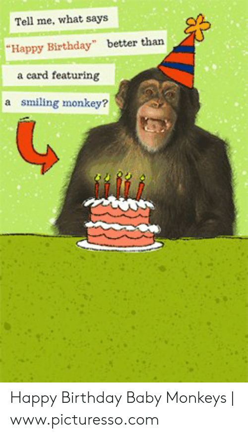 """Birthday, Happy Birthday, and Happy: Tell me, what says  """"Happy Birthday"""" better than  a card featuring  a smiling monkey? Happy Birthday Baby Monkeys 