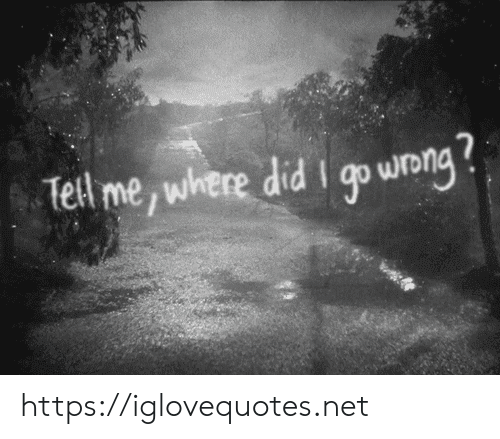 Net, Did, and Wong: Tell me, where did I qo wong https://iglovequotes.net
