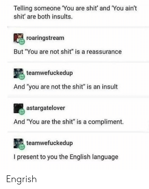 """Shit, English, and Insults: Telling someone You are shit' and You ain't  shit' are both insults.  roaringstream  But """"You are not shit"""" is a reassurance  teamwefuckedup  And """"you are not the shit"""" is an insult  astargatelover  And """"You are the shit"""" is a compliment.  teamwefuckedup  I present to you the English language Engrish"""