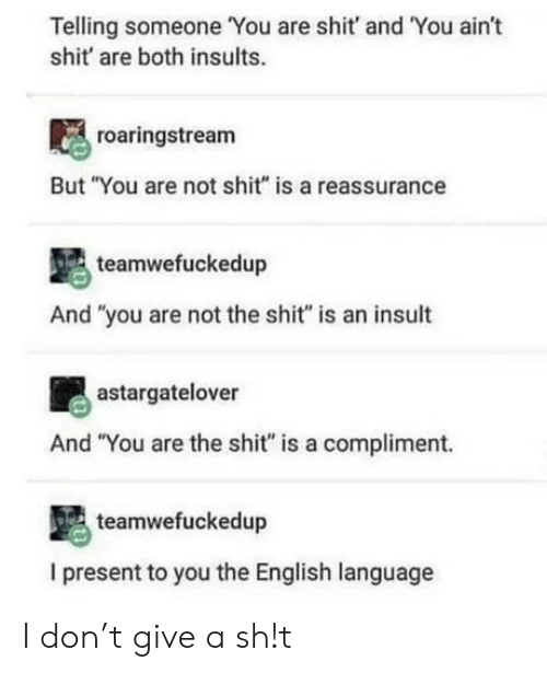 "Shit, English, and Insults: Telling someone You are shit' and 'You aint  shit are both insults.  roaringstream  But ""You are not shit"" is a reassurance  teamwefuckedup  And ""you are not the shit"" is an insult  astargatelover  And ""You are the shit"" is a compliment.  teamwefuckedup  I present to you the English language I don't give a sh!t"