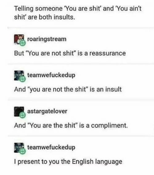 """Shit, English, and Insults: Telling someone You are shit' and You ain't  shit' are both insults.  roaringstream  But """"You are not shit"""" is a reassurance  teamwefuckedup  And """"you are not the shit"""" is an insult  astargatelover  And """"You are the shit"""" is a compliment.  teamwefuckedup  I present to you the English language"""