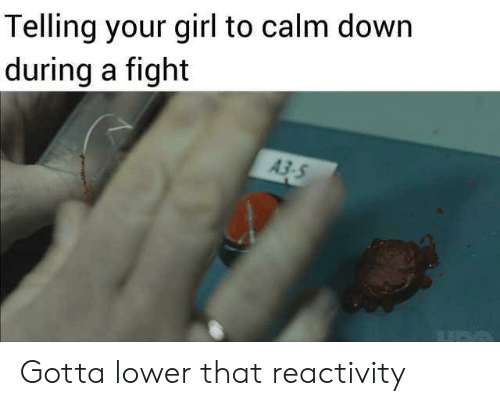 Girl, Your Girl, and Dank Memes: Telling your girl to calm down  during a fight  A3-5 Gotta lower that reactivity