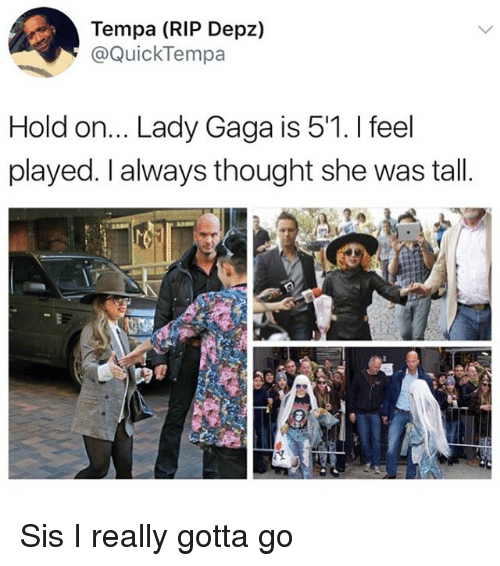 Lady Gaga, Memes, and Thought: Tempa (RIP Depz,)  @QuickTempa  Hold on... Lady Gaga is 5'1. I feel  played. I always thought she was tall Sis I really gotta go