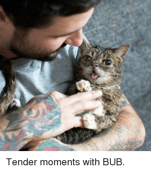 Memes, 🤖, and Tender: Tender moments with BUB.