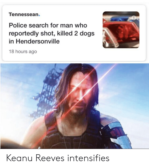 Dogs, Police, and Reddit: Tennessean.  Police search for man who  reportedly shot, killed 2 dogs  in Hendersonville  18 hours ago Keanu Reeves intensifies