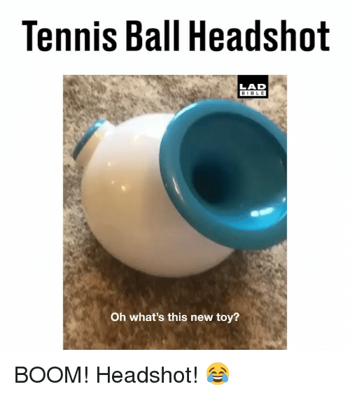 Memes, Bible, and Tennis: Tennis Ball Headshot  LAD  BIBLE  Oh what's this new toy? BOOM! Headshot! 😂