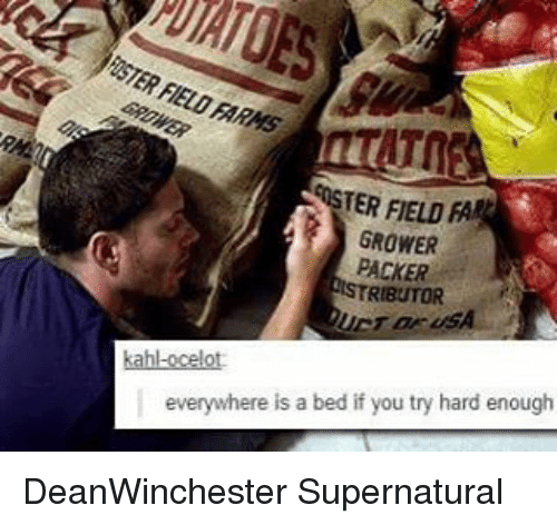 Memes, 🤖, and Beds: TER FIELD  FA  GROWER  PACKER  RIBUTOR  everywhere is a bed if you try hard enough DeanWinchester Supernatural