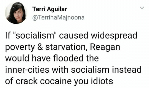 """Memes, Cocaine, and Socialism: Terri Aguilar  @TerrinaMajnoona  If """"socialism"""" caused widespread  poverty & starvation, Reagan  would have flooded the  inner-cities with socialism instead  of crack cocaine you idiots"""