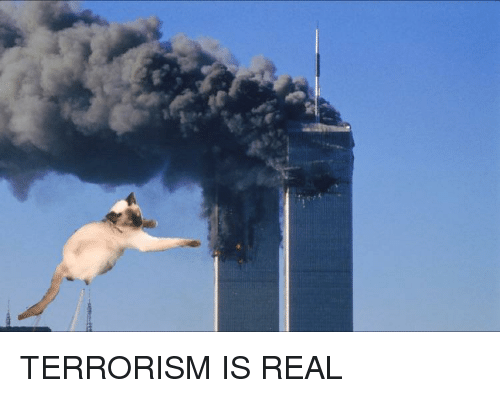 Terrorism, Im Going to Hell for This, and Real