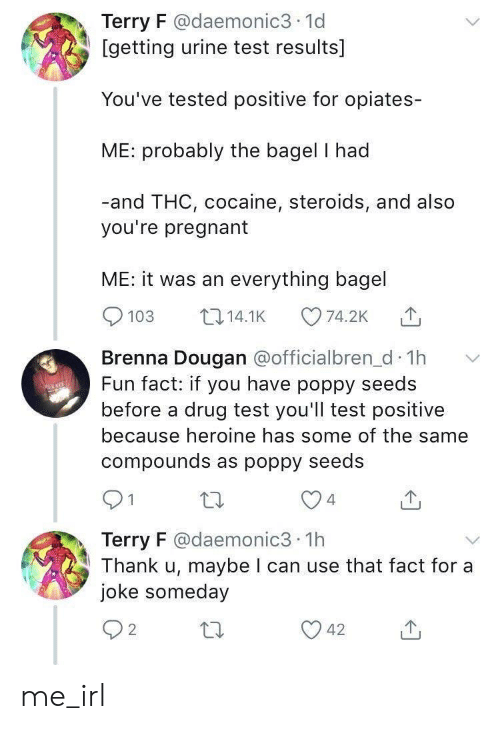 Pregnant, Cocaine, and Test: Terry F @daemonic3 1d  [getting urine test results]  You've tested positive for opiates-  ME: probably the bagel I had  -and THC, cocaine, steroids, and also  you're pregnant  ME: it was an everything bagel  103 14.1K 74.2K  Brenna Dougan aofficialbren d Th  Fun fact: if you have poppy seeds  before a drug test you'll test positive  because heroine has some of the same  compounds as poppy seedS  4  Terry F @daemonic3 1h  Thank u, maybe I can use that fact for a  joke someday  2 me_irl