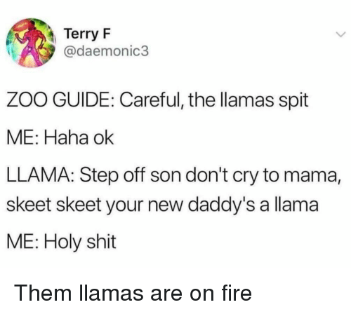 Fire, Shit, and Haha: Terry F  @daemonic3  ZOO GUIDE: Careful, the llamas spit  ME: Haha ok  LLAMA: Step off son don't cry to mama,  skeet skeet your new daddy's a llama  ME: Holy shit Them llamas are on fire