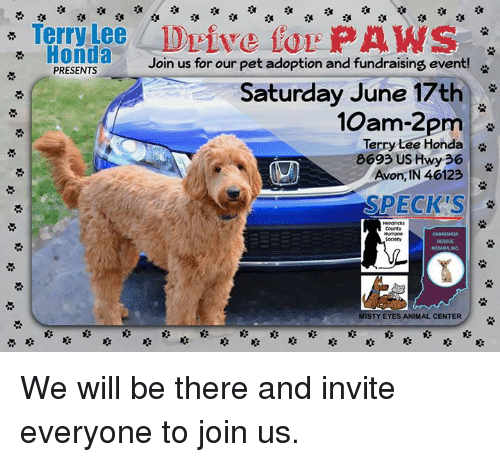 Avon, Honda, And Memes: Terry Nee Drive For PAWS Honda Join Us For