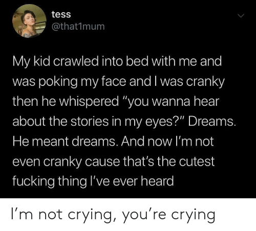 "Crying, Fucking, and Not Crying: tess  @that1mum  My kid crawled into bed with me and  was poking my face and I was cranky  then he whispered ""you wanna hear  about the stories in my eyes?"" Dreams.  He meant dreams. And now l'm not  even cranky cause that's the cutest  fucking thing l've ever heard I'm not crying, you're crying"