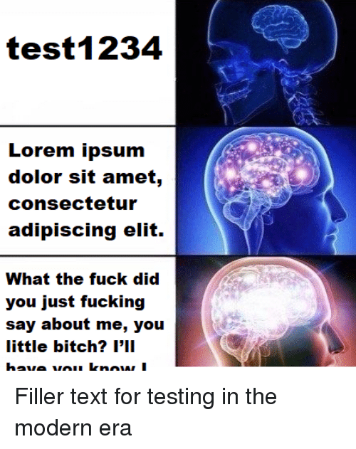 Text, Era, and Lorem Ipsum: test1234  Lorem ipsum  dolor sit amet,  consectetur  adipiscing elit.  What the fuck did  you just fucking  say about me, you  little bitch? l'1I Filler text for testing in the modern era