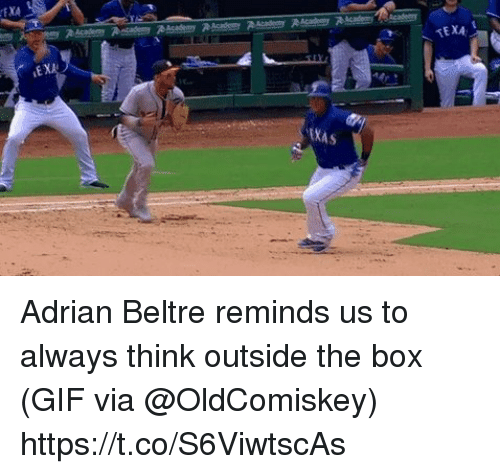 Gif, Sports, and Adrian Beltre: TEXA  EXA  EKAS Adrian Beltre reminds us to always think outside the box   (GIF via @OldComiskey) https://t.co/S6ViwtscAs