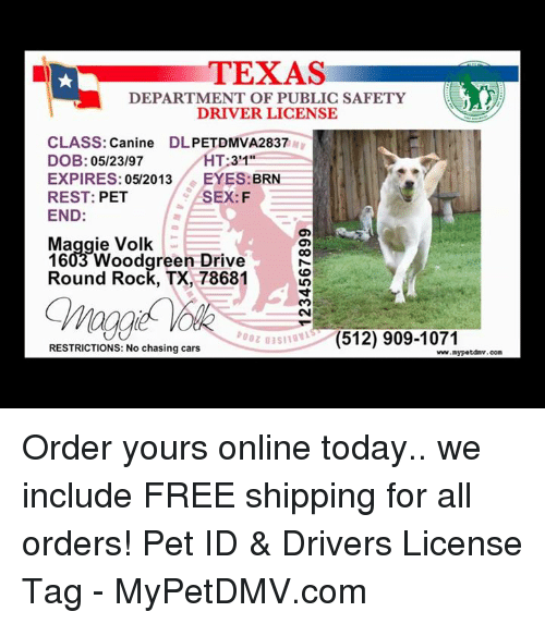 texas department of public safety driver license class canine dl