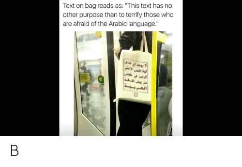 """Funny, Text, and Arabic (Language): Text on bag reads as: """"This text has no  other purpose than to terrify those who  are afraid of the Arabic language.""""  a B"""