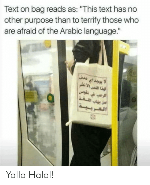 """Text, Arabic (Language), and Who: Text on bag reads as: """"This text has no  other purpose than to terrify those who  are afraid of the Arabic language."""" Yalla Halal!"""