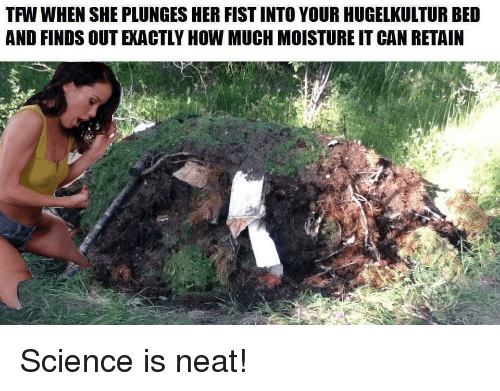 Reddit, Tfw, and Science: TFW WHEN SHE PLUNGES HER FIST INTO YOUR HUGELKULTUR BED  AND FINDS OUT EXACTLY HOW MUCH MOISTURE IT CAN RETAIN