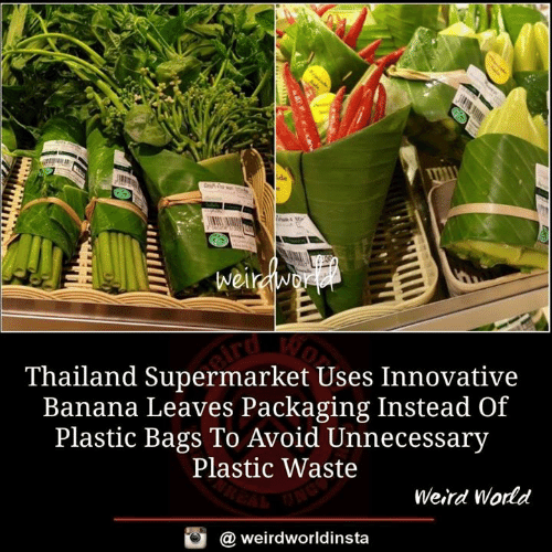 Memes, Weird, and Banana: Thailand Supermarket Uses Innovative  Banana Leaves Packaging Instead Of  Plastic Bags To Avoid Unnecessary  Plastic Waste  Weird Wodd  @ weirdworldinsta