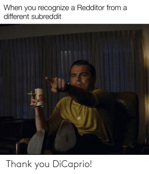 Reddit, Thank You, and Dicaprio: Thank you DiCaprio!