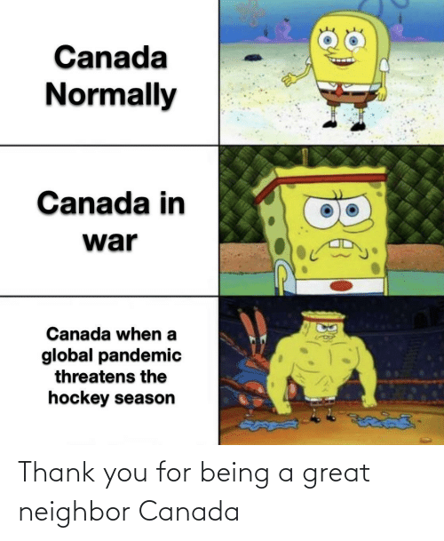 Thank You, Canada, and You: Thank you for being a great neighbor Canada