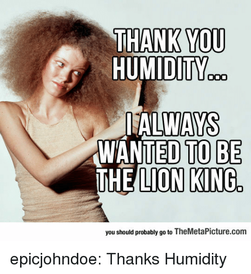Tumblr, The Lion King, and Thank You: THANK YOU  HUMIDITY  ALWAYS  WANTED TOBE  THE LION KING  you should probably go to TheMetaPicture.com epicjohndoe:  Thanks Humidity