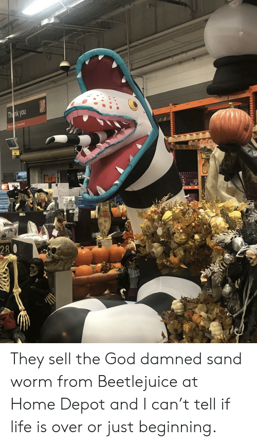 God, Life, and Thank You: Thank you  Ma Gaeed  PUMP  PZC  askc  Lasko  4  28 They sell the God damned sand worm from Beetlejuice at Home Depot and I can't tell if life is over or just beginning.