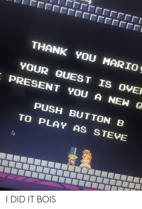 Thank You Mario Your Quest Is Ove Present You A New G Push Button